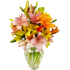 Israel Flowers (f44) 12 Stem Assorted Asiatic Lily Bunch